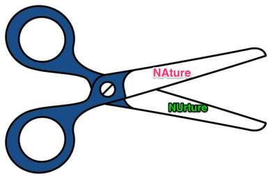 scissors-clip-art-5_jpg__1200×1200_